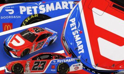 Bubba Wallace - DoorDash - PetSmart - Asher - esquema de pintura NASCAR